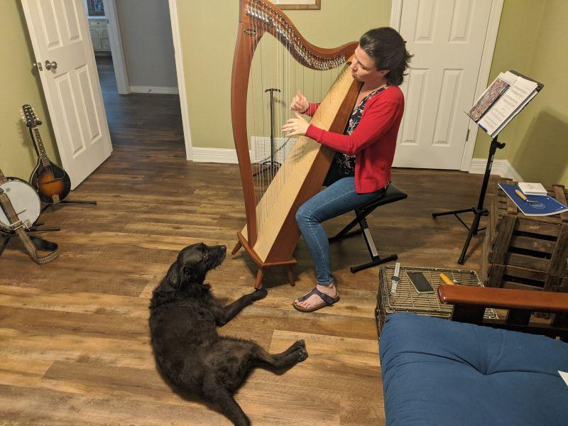 Dana Loves to Play Harp
