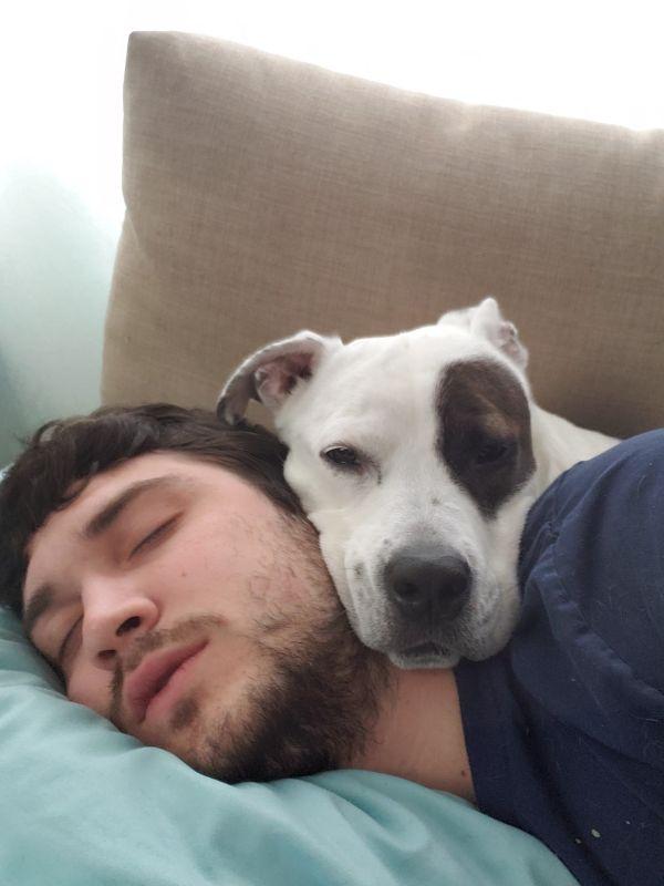 Faye & Austin Napping