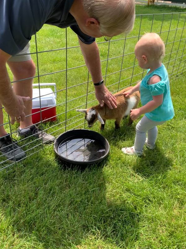Petting Baby Goats with Grandpa