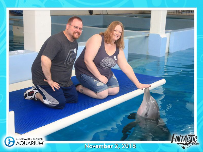 Meeting Winter the Dolphin From the Movie Dolphin Tale