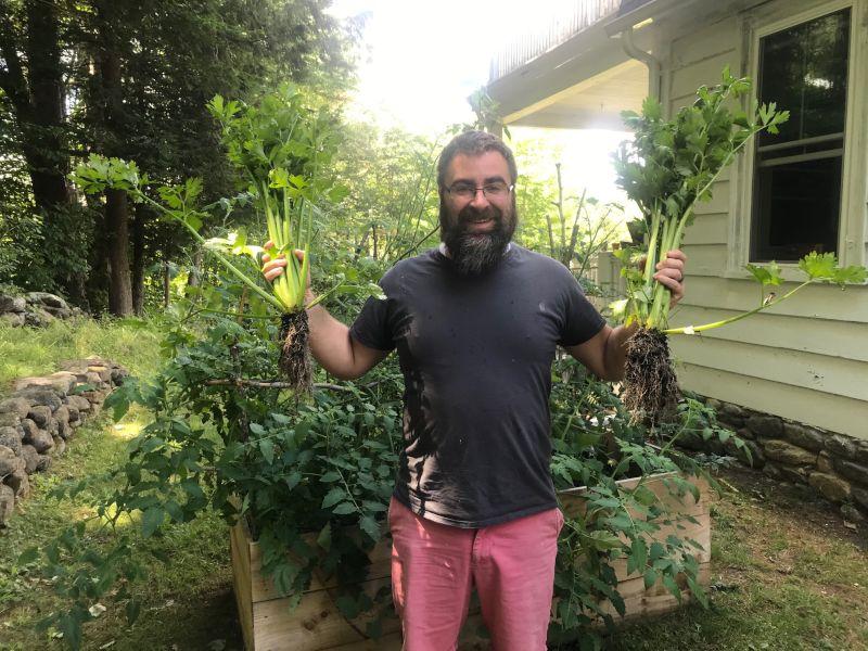 Tim Harvesting Vegetables From Our Garden