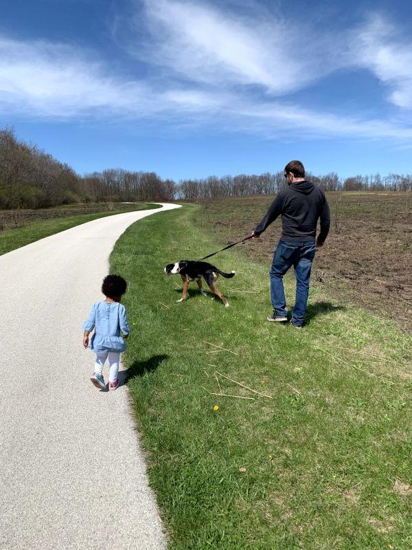 On Their Daily Walk