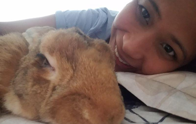 Snuggles with Bigwig