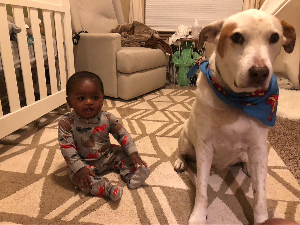 Amari Loves Dogs!