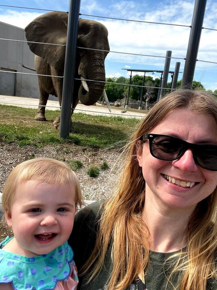 At the Zoo