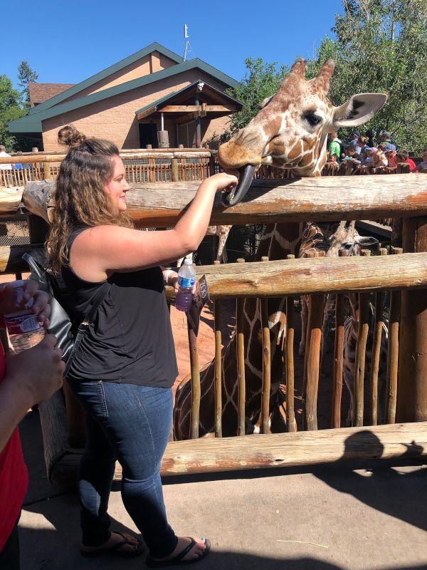 Julie Feeding a Giraffe at the Zoo