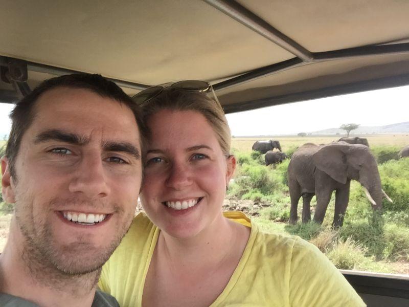 Elephants on an African Safari
