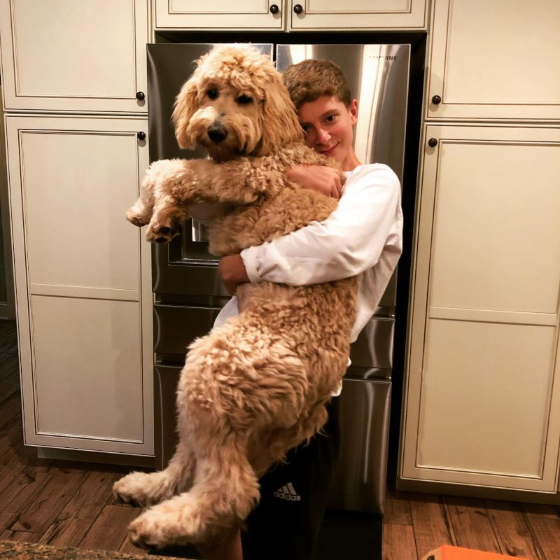 JK & Our Pup