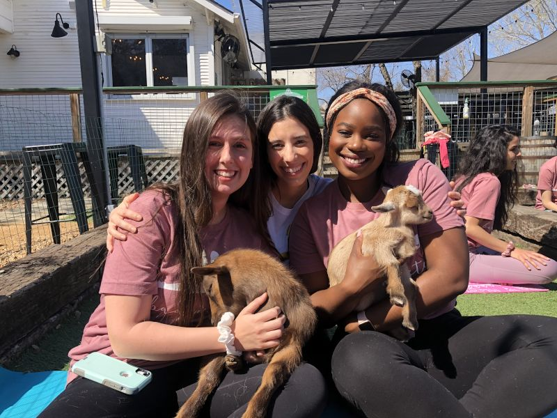 Goat Yoga With Friends