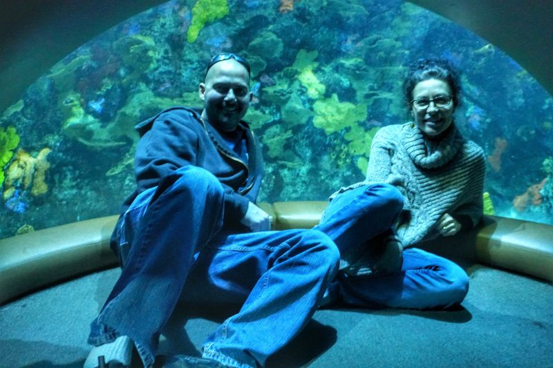 We Have One of the Best Aquariums in Our Town