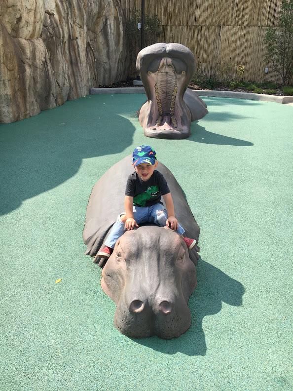 Zoo Fun