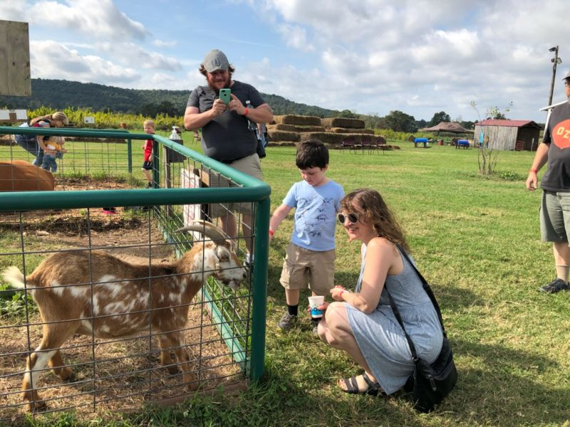 Visiting a Petting Zoo With Our Nephew