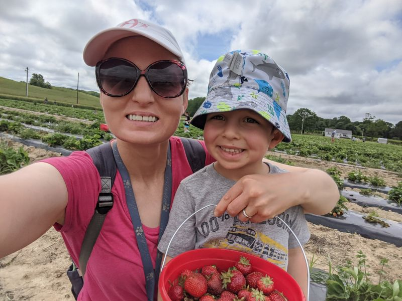 Picking Strawberries With Mom