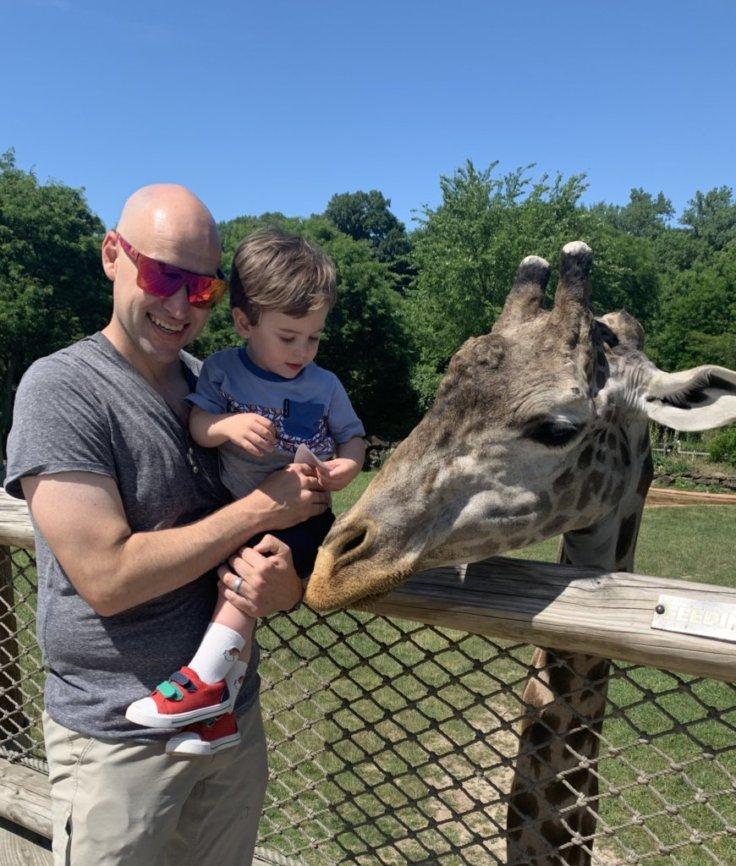 Meeting a Giraffe