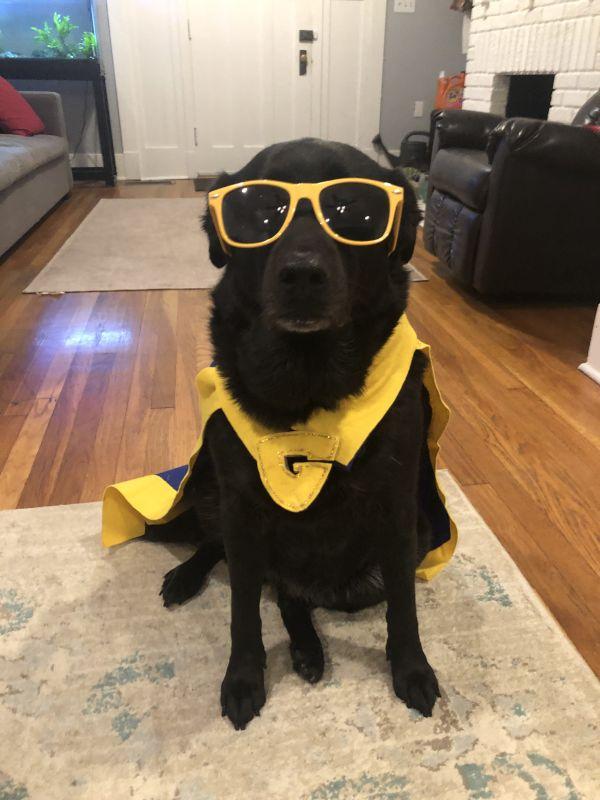 Kira Dressed Up For Halloween