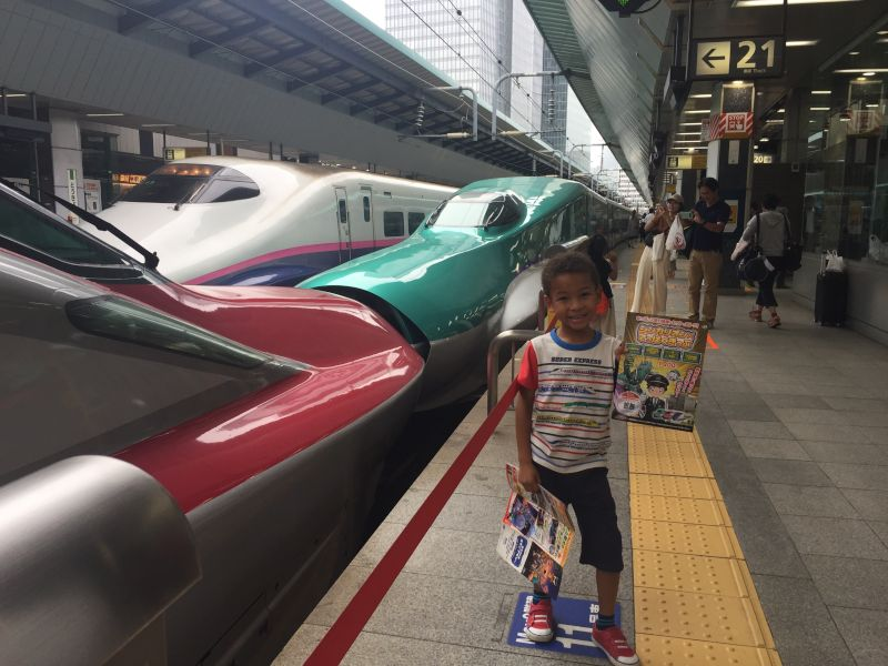 Our Son Was So Happy Seeing All of the Bullet Trains