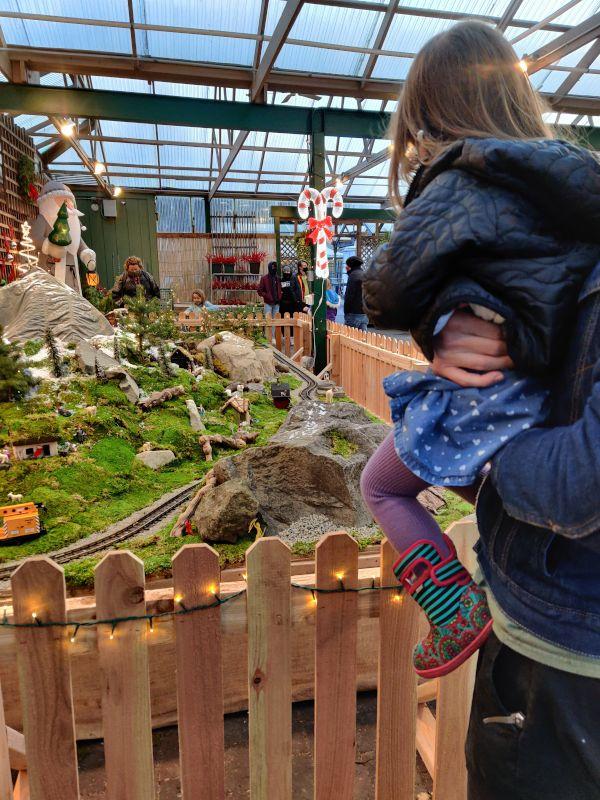 Visiting the Christmas Train at Swanson's