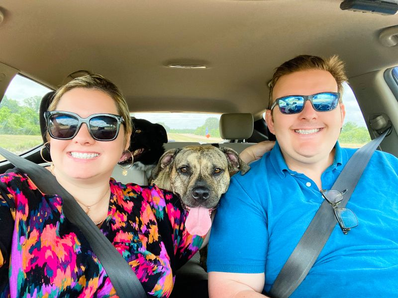 Road Trip With Our Dogs